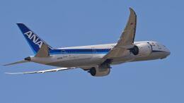 オキシドールさんが、福岡空港で撮影した全日空 787-8 Dreamlinerの航空フォト(飛行機 写真・画像)
