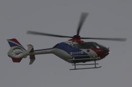 Sharp Fukudaさんが、羽田空港で撮影した毎日新聞社 EC135T1の航空フォト(飛行機 写真・画像)