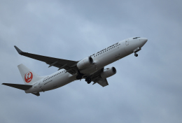 navipro787さんが、宮崎空港で撮影した日本航空 737-846の航空フォト(飛行機 写真・画像)