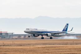 mamemashinさんが、佐賀空港で撮影した全日空 A321-211の航空フォト(飛行機 写真・画像)