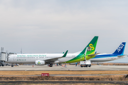 mamemashinさんが、佐賀空港で撮影した春秋航空日本 737-86Nの航空フォト(飛行機 写真・画像)