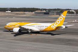 utarou on NRTさんが、成田国際空港で撮影したスクート 787-8 Dreamlinerの航空フォト(飛行機 写真・画像)