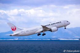 triton@blueさんが、中部国際空港で撮影した全日空 787-9の航空フォト(飛行機 写真・画像)