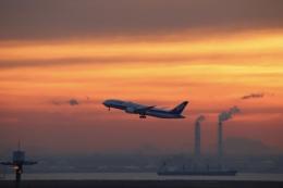 m_aereo_iさんが、羽田空港で撮影した全日空 787-8 Dreamlinerの航空フォト(飛行機 写真・画像)