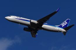 航空フォト:JA58AN 全日空 737-800