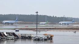 誘喜さんが、成田国際空港で撮影した全日空 787-10の航空フォト(飛行機 写真・画像)