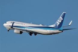 DONKEYさんが、宮崎空港で撮影した全日空 737-881の航空フォト(飛行機 写真・画像)