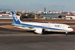 DONKEYさんが、宮崎空港で撮影した全日空 787-8 Dreamlinerの航空フォト(飛行機 写真・画像)