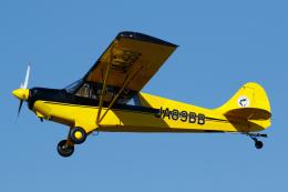 よっしぃさんが、大利根飛行場で撮影した日本モーターグライダークラブ A-1 Huskyの航空フォト(飛行機 写真・画像)