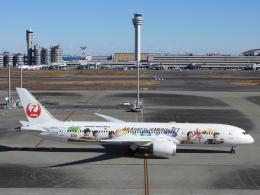 チャレンジャーさんが、羽田空港で撮影した日本航空 787-9の航空フォト(飛行機 写真・画像)