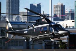 チャーリーマイクさんが、東京ヘリポートで撮影した警視庁 A109S Trekkerの航空フォト(飛行機 写真・画像)