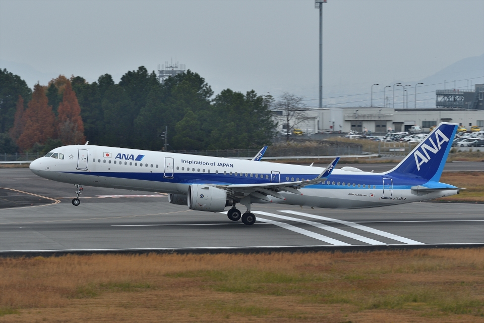 qooさんの全日空 Airbus A321neo (JA139A) 航空フォト