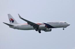 フッ軽の極美さんが、シンガポール・チャンギ国際空港で撮影したマレーシア航空 737-8H6の航空フォト(飛行機 写真・画像)