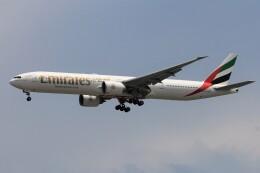フッ軽の極美さんが、シンガポール・チャンギ国際空港で撮影したエミレーツ航空 777-31H/ERの航空フォト(飛行機 写真・画像)
