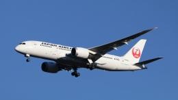航空フォト:JA832J 日本航空 787-8 Dreamliner