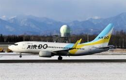 にしやんさんが、帯広空港で撮影したAIR DO 737-781の航空フォト(飛行機 写真・画像)