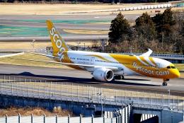 SFJ_capさんが、成田国際空港で撮影したスクート 787-8 Dreamlinerの航空フォト(飛行機 写真・画像)