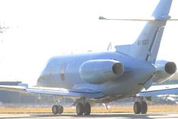 TAK_HND_NRTさんが、浜松基地で撮影した航空自衛隊 U-125A(Hawker 800)の航空フォト(飛行機 写真・画像)