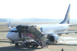 海鷹さんが、茨城空港で撮影したスカイマーク 737-8ALの航空フォト(飛行機 写真・画像)
