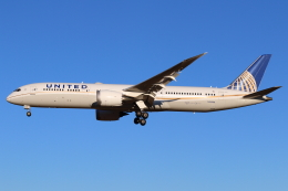 やつはしさんが、成田国際空港で撮影したユナイテッド航空 787-9の航空フォト(飛行機 写真・画像)