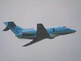 WAiRさんが、新田原基地で撮影した航空自衛隊 U-125A (BAe-125-800SM)の航空フォト(飛行機 写真・画像)