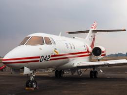WAiRさんが、新田原基地で撮影した航空自衛隊 U-125 (BAe-125-800FI)の航空フォト(飛行機 写真・画像)