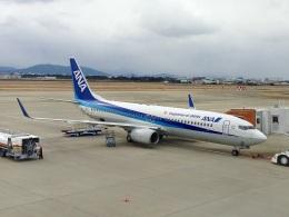 やまモンさんが、徳島空港で撮影した全日空 737-881の航空フォト(飛行機 写真・画像)