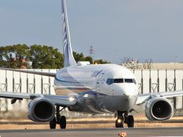 monjiro22001さんが、伊丹空港で撮影した全日空 737-881の航空フォト(飛行機 写真・画像)