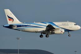 jun☆さんが、スワンナプーム国際空港で撮影したバンコクエアウェイズ A319-132の航空フォト(飛行機 写真・画像)