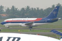 jun☆さんが、スカルノハッタ国際空港で撮影したスリウィジャヤ航空 737-284/Advの航空フォト(飛行機 写真・画像)
