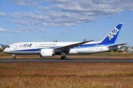 冷やし中華始めましたさんが、伊丹空港で撮影した全日空 787-8 Dreamlinerの航空フォト(飛行機 写真・画像)
