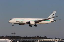 マーサさんが、成田国際空港で撮影したZIPAIR 787-8 Dreamlinerの航空フォト(飛行機 写真・画像)