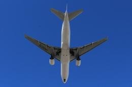 キイロイトリさんが、伊丹空港で撮影した日本航空 777-289の航空フォト(飛行機 写真・画像)
