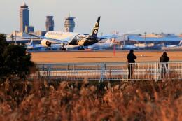 ☆ライダーさんが、成田国際空港で撮影したニュージーランド航空 787-9の航空フォト(飛行機 写真・画像)