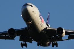 宮崎 育男さんが、成田国際空港で撮影したフェデックス・エクスプレス MD-11Fの航空フォト(飛行機 写真・画像)