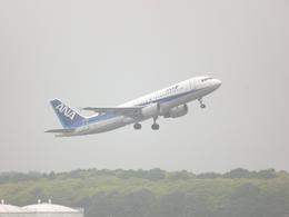 JA305Kさんが、成田国際空港で撮影した全日空 A320-214の航空フォト(飛行機 写真・画像)