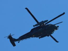 丸めがねさんが、入間飛行場で撮影した航空自衛隊 UH-60Jの航空フォト(飛行機 写真・画像)