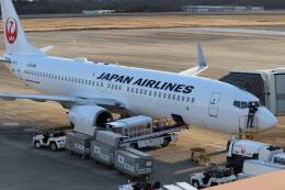 キハ82さんが、岡山空港で撮影した日本航空 737-846の航空フォト(飛行機 写真・画像)