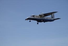 taiki_jcg__jediさんが、調布飛行場で撮影した新中央航空 Do 228-212 NGの航空フォト(飛行機 写真・画像)