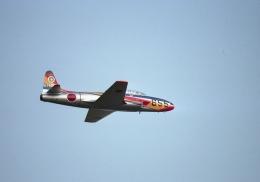 元青森人さんが、入間飛行場で撮影した航空自衛隊 T-33Aの航空フォト(飛行機 写真・画像)