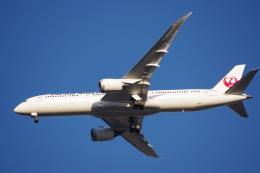 JA8037さんが、成田国際空港で撮影した日本航空 787-9の航空フォト(飛行機 写真・画像)