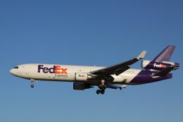 赤ちんさんが、成田国際空港で撮影したフェデックス・エクスプレス MD-11Fの航空フォト(飛行機 写真・画像)