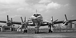 Y.Todaさんが、羽田空港で撮影したKLMオランダ航空 L-1049C Super Constellationの航空フォト(飛行機 写真・画像)