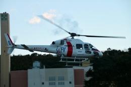 jo7ilpさんが、静岡ヘリポートで撮影した東邦航空 AS355Nの航空フォト(飛行機 写真・画像)