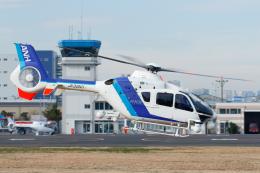 よっしぃさんが、東京ヘリポートで撮影したオールニッポンヘリコプター EC135T2の航空フォト(飛行機 写真・画像)