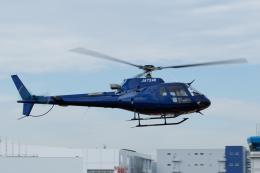 よっしぃさんが、東京ヘリポートで撮影した日本個人所有 AS350B3 Ecureuilの航空フォト(飛行機 写真・画像)