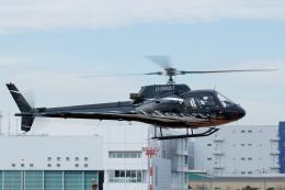 よっしぃさんが、東京ヘリポートで撮影した日本法人所有 AS350B Ecureuilの航空フォト(飛行機 写真・画像)