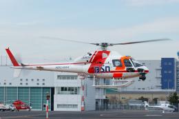 よっしぃさんが、東京ヘリポートで撮影した朝日航洋 AS355F1 Ecureuil 2の航空フォト(飛行機 写真・画像)