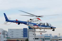 よっしぃさんが、東京ヘリポートで撮影した中日本航空 430の航空フォト(飛行機 写真・画像)