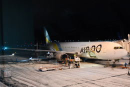 tamtam3839さんが、新千歳空港で撮影したAIR DO 767-33A/ERの航空フォト(飛行機 写真・画像)